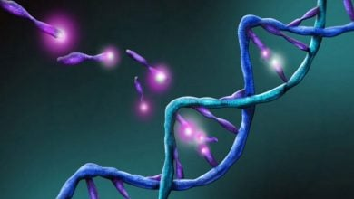Photo of ردیابی سیگنالینگ فاکتور رشد در سرطان