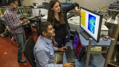 Photo of Infrared Beams Show Cell Types in a Different Light