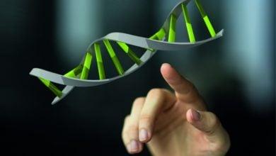 Photo of Genome editing: Call for new EU legislation