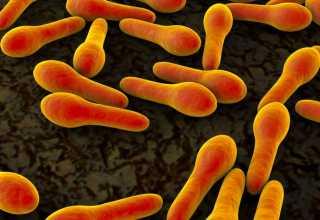 کمک پروتئینهای مدفوع در تشخیص بیماری