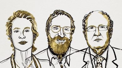 Photo of Nobel in Chemistry Awarded for Directed Evolution of Enzymes and Antibodies