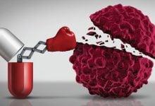 سنتز نانوحامل با استفاده از مواد زیستپایه