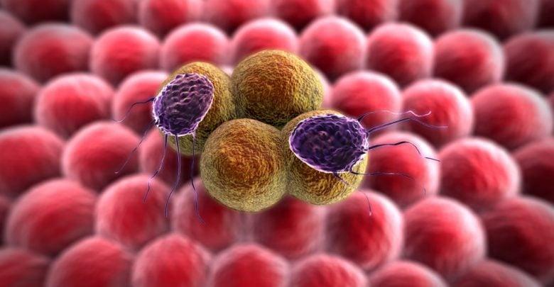 Next-Gen Cancer Immunotherapy