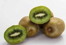 Kiwifruit duplicated its vitamin C - اخبار زیست فن
