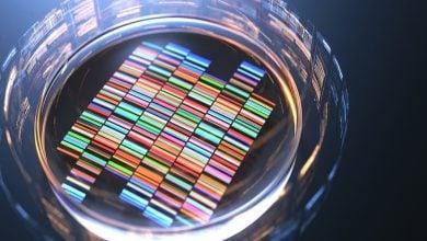 دانشمندان بهطور پیوسته در تلاش جهت بهبود کارایی سیستم CRISPR/Cas9 با تمرکز بر سطح رونویسی هستند.