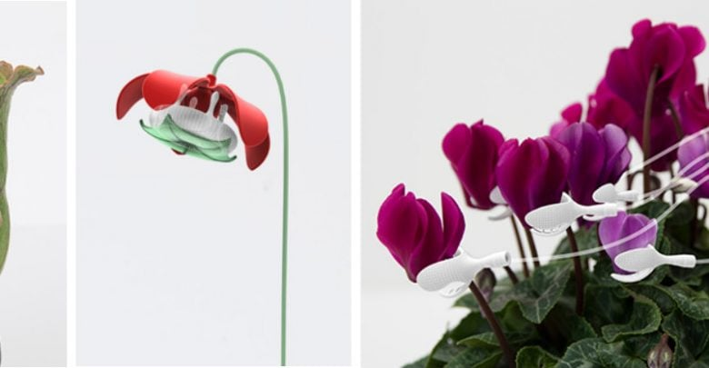 Sex Toys for Plants - اخبار زیست فن