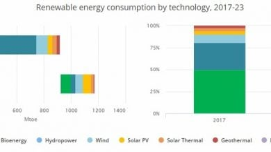 bioenergy production - اخبار زیست فن
