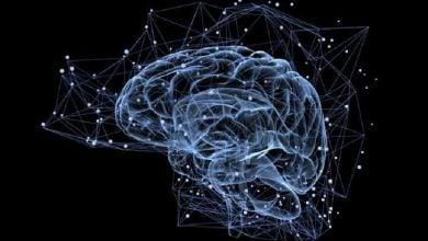 Photo of نقش دوپامین در پارکینسون و اختلالات روانپزشکی