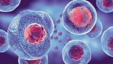 سلولهای بنیادی و درمان اختلالات عصبی