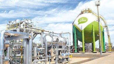 تولید پلاستیک سبز