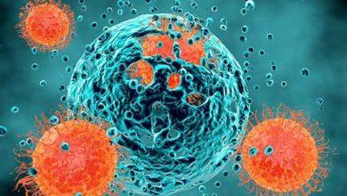 Photo of مهار سرطان با مهار متاستاز