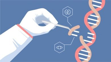 Photo of Decoding the structure of an RNA-based CRISPR system