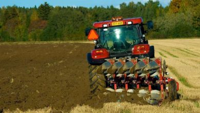 Photo of Recharging soils with carbon could make farms more productive