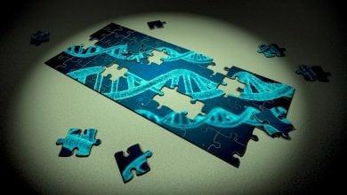 Photo of استفاده از CRISPR در رحم برای درمان بیماری