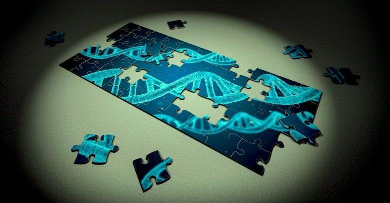 کاربرد CRISPR در رحم