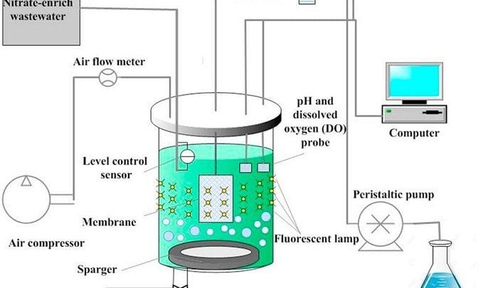 بررسی گرفتگی غشا در بیوراکتور غشایی حاوی ریزجلبک