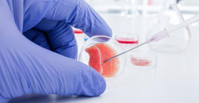 یک محقق ایرانی با نمونهگیری از سلولهای غضروف انسان، تکثیر و کشت آنها روی یک داربست پروتئینی از جنس کلاژن، موفق به تولید غضروف انسان شد.