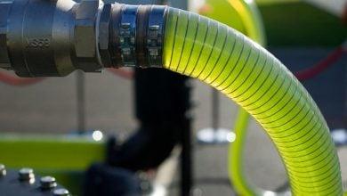 سوخت زیستی و ریزجلبک