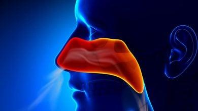 Photo of نقش حفاظتی اگزوزومها در بینی