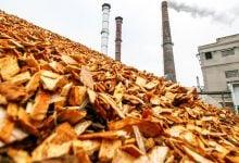 تبدیل زیستتودههای چوبی