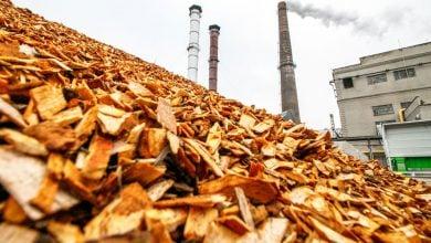 Photo of تبدیل ترموشیمیایی زیستتودههای چوبی به انرژی، سوخت و مواد شیمیایی