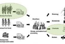 پالایش زیستی مواد لیگنوسلولزی، شامل فرایندهایی است که زیستتودههای گیاهی را به طیف وسیعی از محصولات زیستپایه تبدیل میکند.