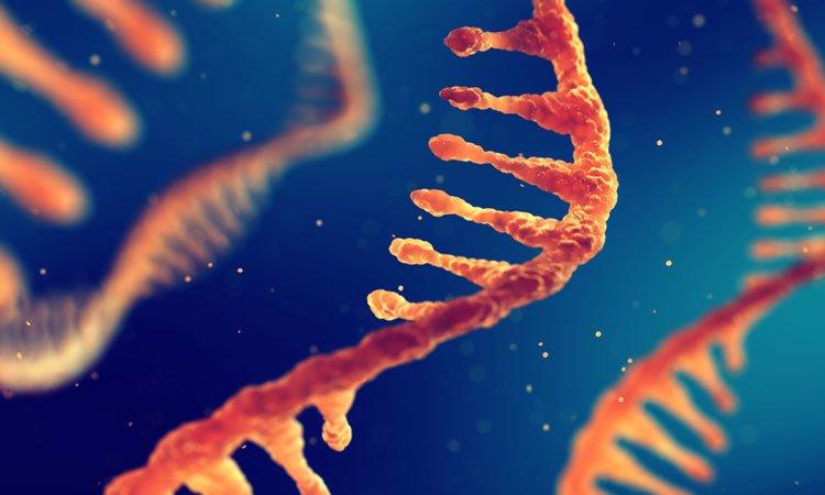 ژن درمانی به کمک RNA