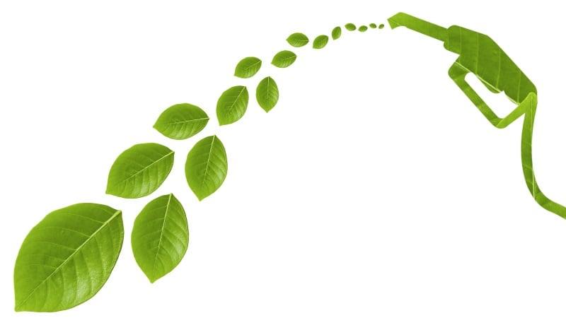 در این مطالعه، هدف بررسی نقش سوخت زیستی به عنوان یک انرژی تجدیدپذیر در اشتغالزایی است. میزان اشتغالزایی یک صنعت به پارامترهایی نظیر عوامل فنی، اقتصادی و سیاستگذاری وابسته است.