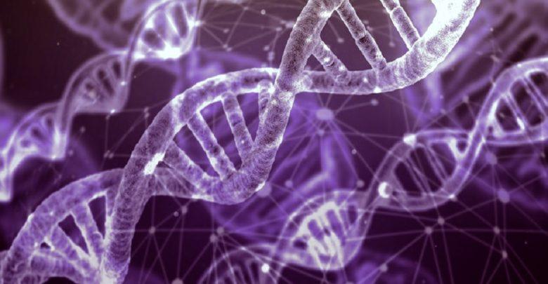 Analyze Epigenetic