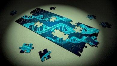 CRISPR in Utero