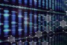 Photo of تجزیهوتحلیل دادههای توالییابی RNA با یادگیری ماشین