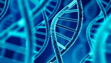 Photo of Nanopore technology with DNA computing easily detects microRNA patterns of lung cancer
