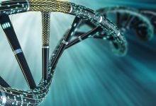 توسعه محصولات یاروویا لیپولیتیکا با زیست شناسی مصنوعی