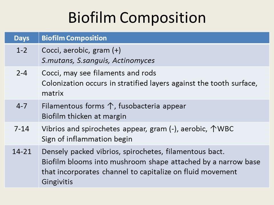 ترکیبات بیوفیلمی