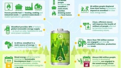 Photo of Asian Biomass Market: Growing Despite Policy Setbacks