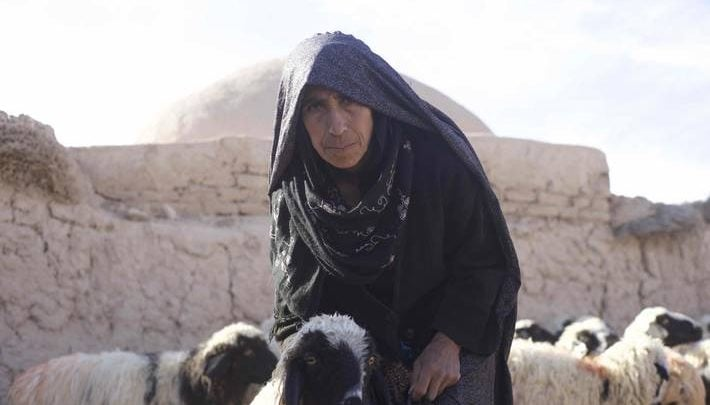 Farmers grappling with Afghanistan drought - اخبار زیست فن