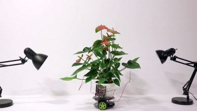 This Plant Is Driving Its Own Robot - اخبار زیست فن