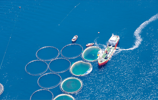 aquaculture are being overlooked - اخبار زیست فن