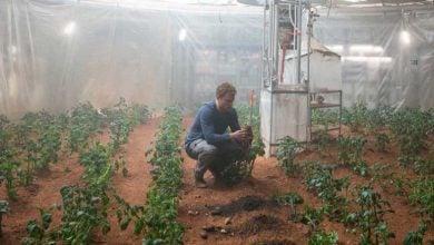 کشاورزی بر روی مریخ
