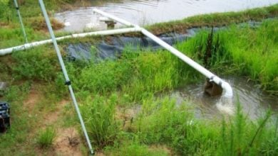 filter water from agricultural fields - اخبار زیست فن