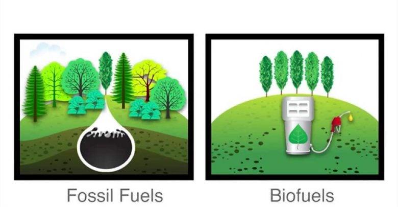 اشتغال در انرژی تجدیدپذیر