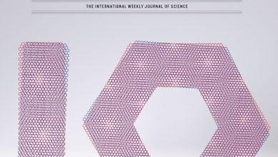 Photo of دانشمندان مطرح سال گذشته در حوزه زیستفناوری از نگاه مجله نیچر
