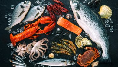 Photo of Biodegradable, edible film kills pathogens on seafood