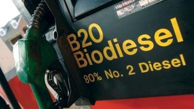 Biodiesel Strategy - اخبار زیست فن