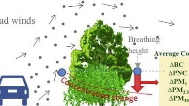تأثیر پرچینهای گیاهی بر کاهش آلودگی هوا