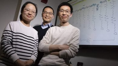 Photo of Unmuting Large Silent Genes Lets Bacteria Produce New Molecules, Potential Drug Candidates