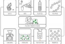 پلاستیکهای زیستی