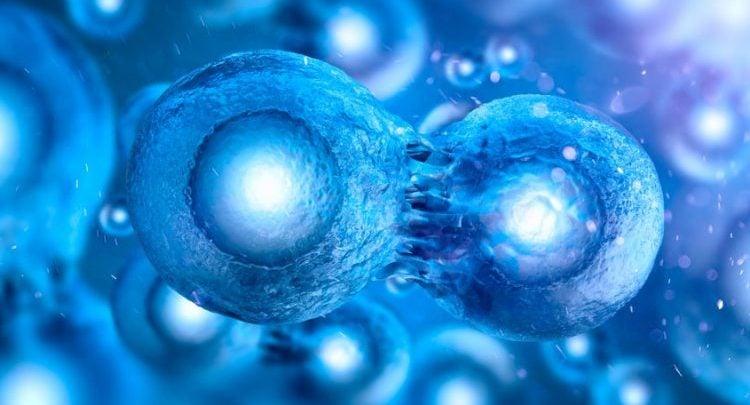 فناوری مبارزه با سرطان