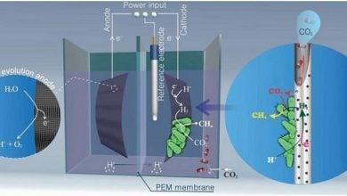 Photo of تبدیل کربندیاکسید صنعتی به مواد شیمیایی ارزشمند توسط میکروبها