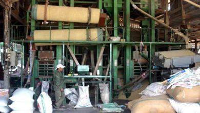 Photo of ارزیابی الگوی انرژی، زیستمحیطی و اقتصادی بهینه در کارخانجات شالیکوبی برنج